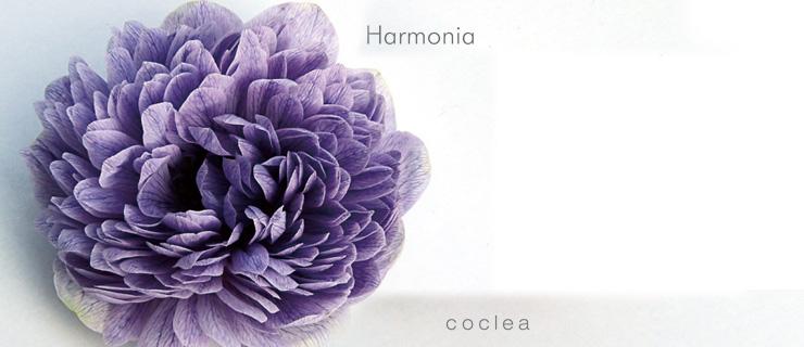 ハルモニア Your Thirteen Chakras: Music for Harmony and Balance. 13のチャクラを調和させる音楽